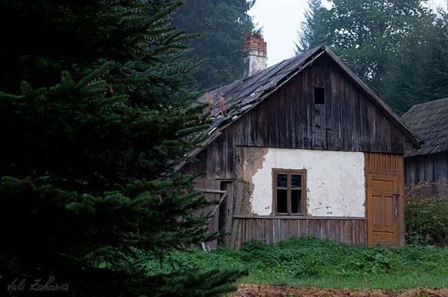 casa_padure_bucovina