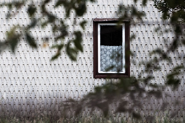 fereastra_magura