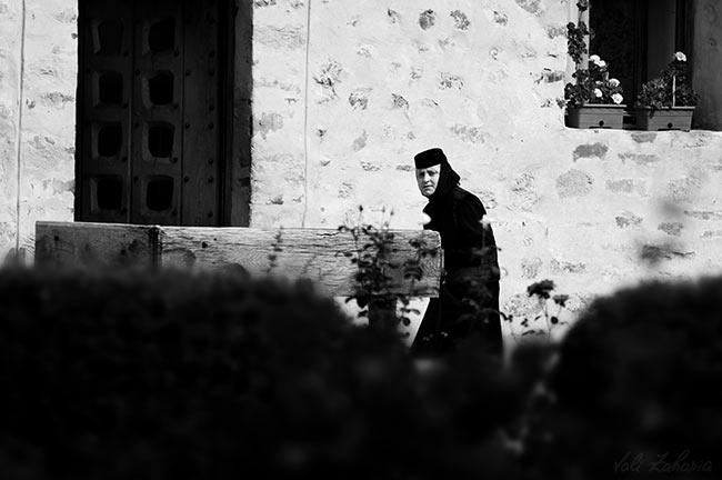portret_maicuta