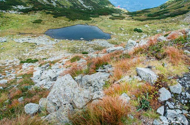 lacul_iezer_muntii_rodnei